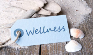 Make time for Wellness with Tai Chi, Qi Gong and Meditation